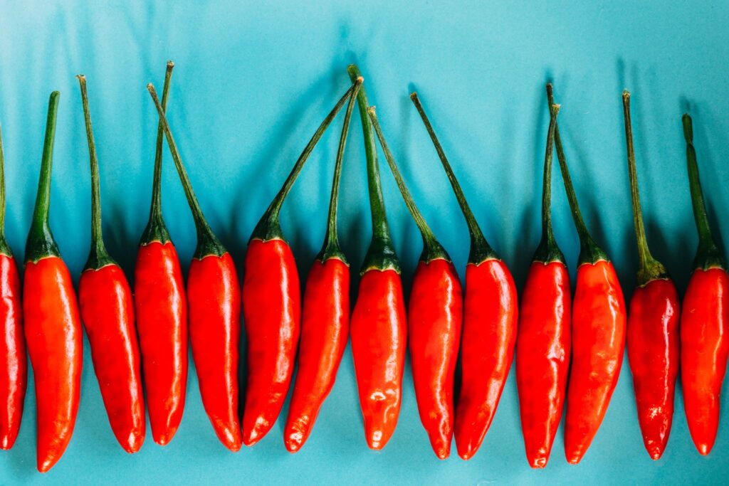 A row of red chillies lined up on a blue table